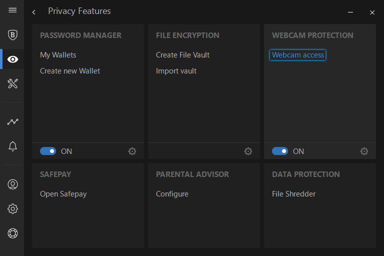 Click on the Webcam access under the WEBCAM PROTECTION panel.